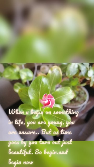 When u begin on something in life, you are young, you are unsure.. But as time goes by you turn out just beautiful. So begin.and begin now
